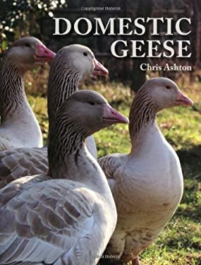 Domestic Geese 9781847972156