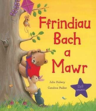 Ffrindiau Bach a Mawr 9781848517066