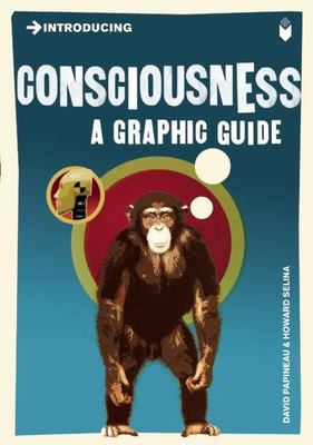 Introducing Consciousness: A Graphic Guide 9781848311718