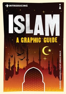 Introducing Islam: A Graphic Guide 9781848310841