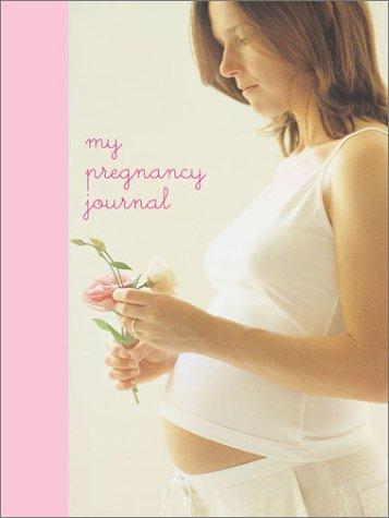 My Pregnancy Journal 9781841724362