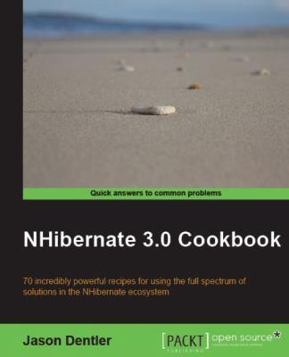 Nhibernate 3.0 Cookbook 9781849513043