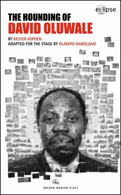 The Hounding of David Oluwale 9781840029024