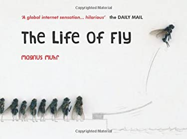 The Life of Fly 9781849531047