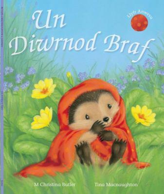 Un Diwrnod Braf 9781848511217
