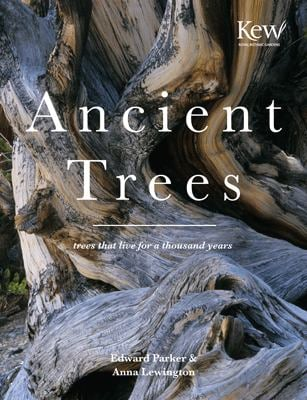 Ancient Trees: Trees That Live for 1,000 Years 9781855859746