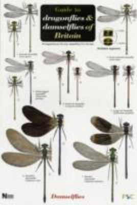 Guide to the Dragonflies and Damselflies of Britain 9781851538638