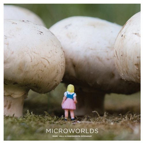 Microworlds 9781856697873