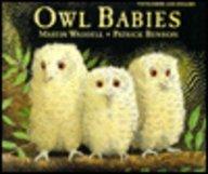 Owl Babies 9781854303486