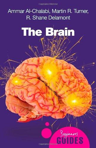The Brain 9781851685943