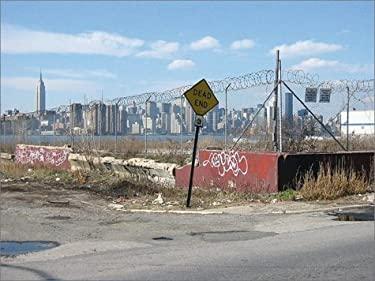 Brooklyn: New Style 9781861542649