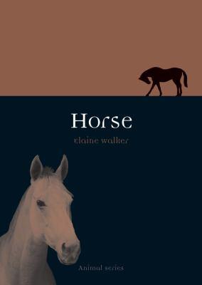 Horse 9781861893956