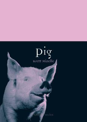 Pig 9781861898050