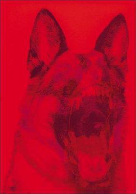 Sagmeister: Made You Look 9781861542076