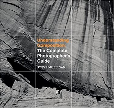Understanding Composition: The Complete Photographer's Guide 9781861085344