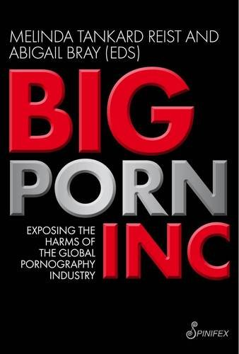 Big Porn Inc: Exposing the Harms of the Global Pornography Industry 9781876756895
