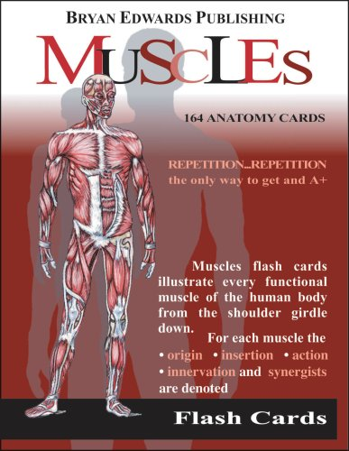 Muscles Flash Cards 9781878576002