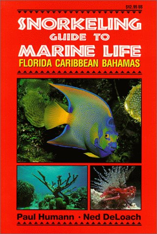 Snorkeling Guide to Marine Life: Florida, Caribbean, Bahamas 9781878348104