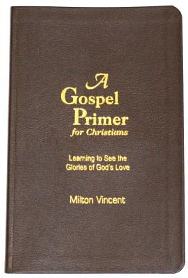 A Gospel Primer for Christians: Learning to See the Glories of God's Love 9781885904935