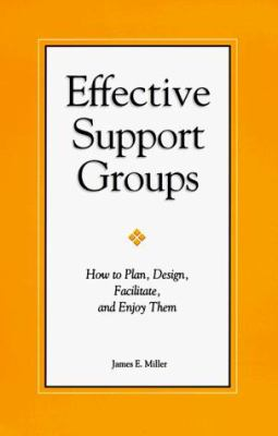 Effective Support Groups 9781885933263