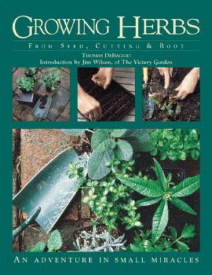 Growing Herbs from Seed, Cutting, and Root: An Adventure in Small Miracles 9781883010782