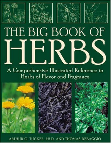The Big Book of Herbs: A Comprehensive Illustrated Reference to Herbs of Flavor and Fragrance 9781883010867