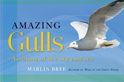 Amazing Gulls: Acrobats of the Sky and Sea 9781892147196