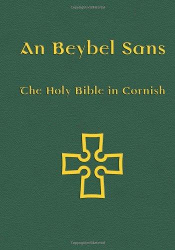 Beybel Sans-FL 9781904808701