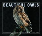 BEAUTIFUL OWLS PORTRAITS OF ARREST