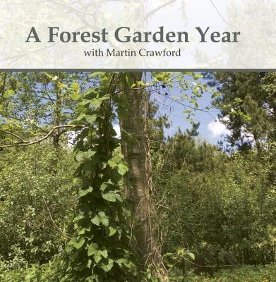 A Forest Garden Year 9781900322614