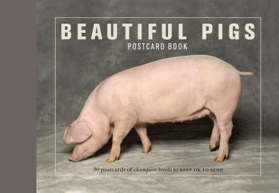 Beautiful Pigs Postcard Book 9781907332128