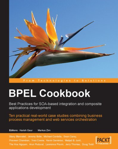 Bpel Cookbook: Best Practices for Soa-Based Integration and Composite Applications Development 9781904811336