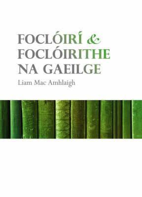 Focloiri & Focloirithe Na Gaeilge 9781901176834