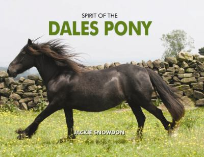 Spirit of the Dales Pony 9781906887940