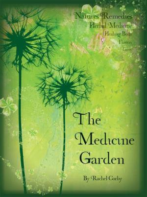 The Medicine Garden 9781904871583