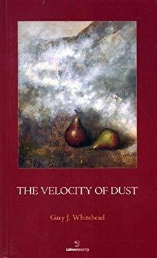 The Velocity of Dust
