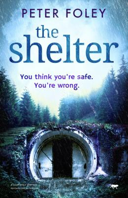 The Shelter: a completely gripping psychological mystery