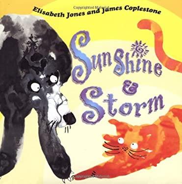 Sunshine and Storm