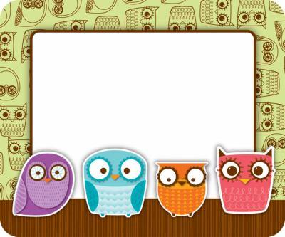 Owls 9781936023875