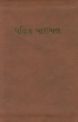 Gujarati Bible-FL-Easy-To-Read 9781935189862