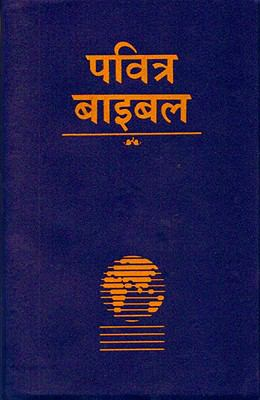 Hindi Bible-FL-Easy to Read