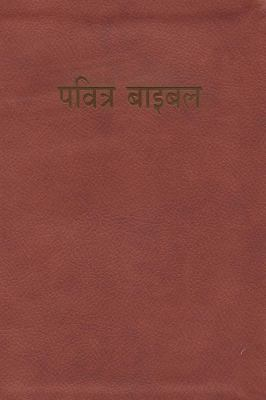 Hindi Bible-FL-Easy-To-Read 9781935189992