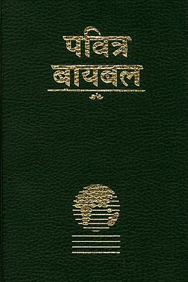 Marathi Bible-FL-Easy-To-Read 9781932438543