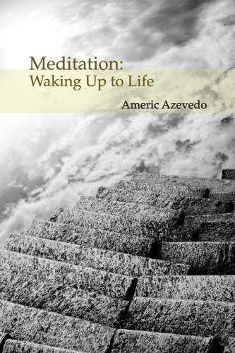 Meditation: Waking Up to Life 9781935551034