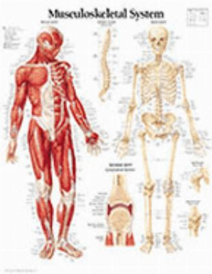 Musculoskeletal System Chart: Wall Chart 9781930633322