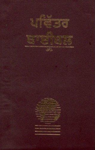 Punjabi Bible-FL-Easy to Read 9781932438871