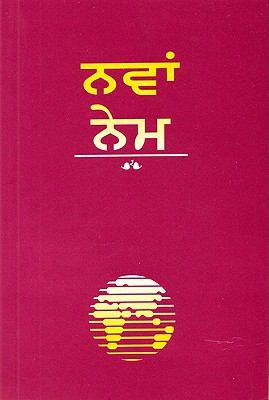 Punjabi New Testament-FL-Easy-To-Read
