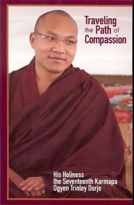 Traveling the Path of Compassion: A Commentary on the Thirty-Seven Practices of a Bodhisattva 9781934608067