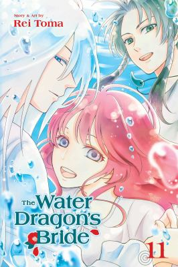 The Water Dragon's Bride, Vol. 11 (11)