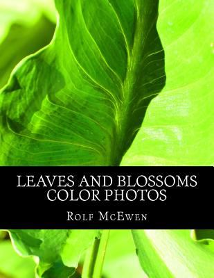 Leaves and Blossoms - Color Photos